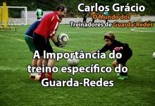 A importância do Treino Específico do Guarda-Redes nos Clubes de  Futebol – por Carlos Grácio