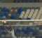 Rafa Santos responde entre intervenções complicadas – Sertanense FC 0-3 SL Benfica